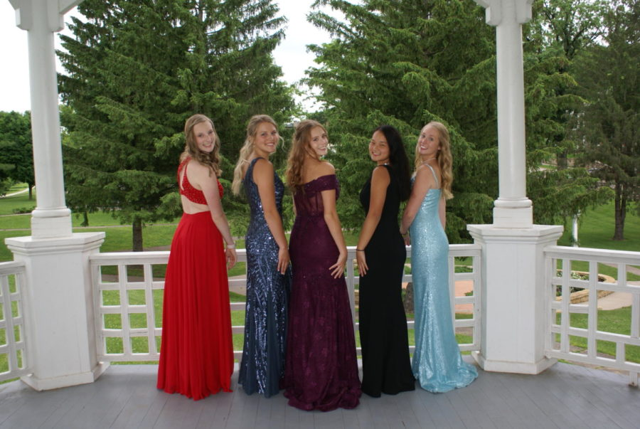 Senior girls Kylie Brown, Kate Moran, Morgan McIntyre, Olivia Schafer, and Elli Kruse all turn their heads and smile for a picture. This photo was taken last year for their fake prom.